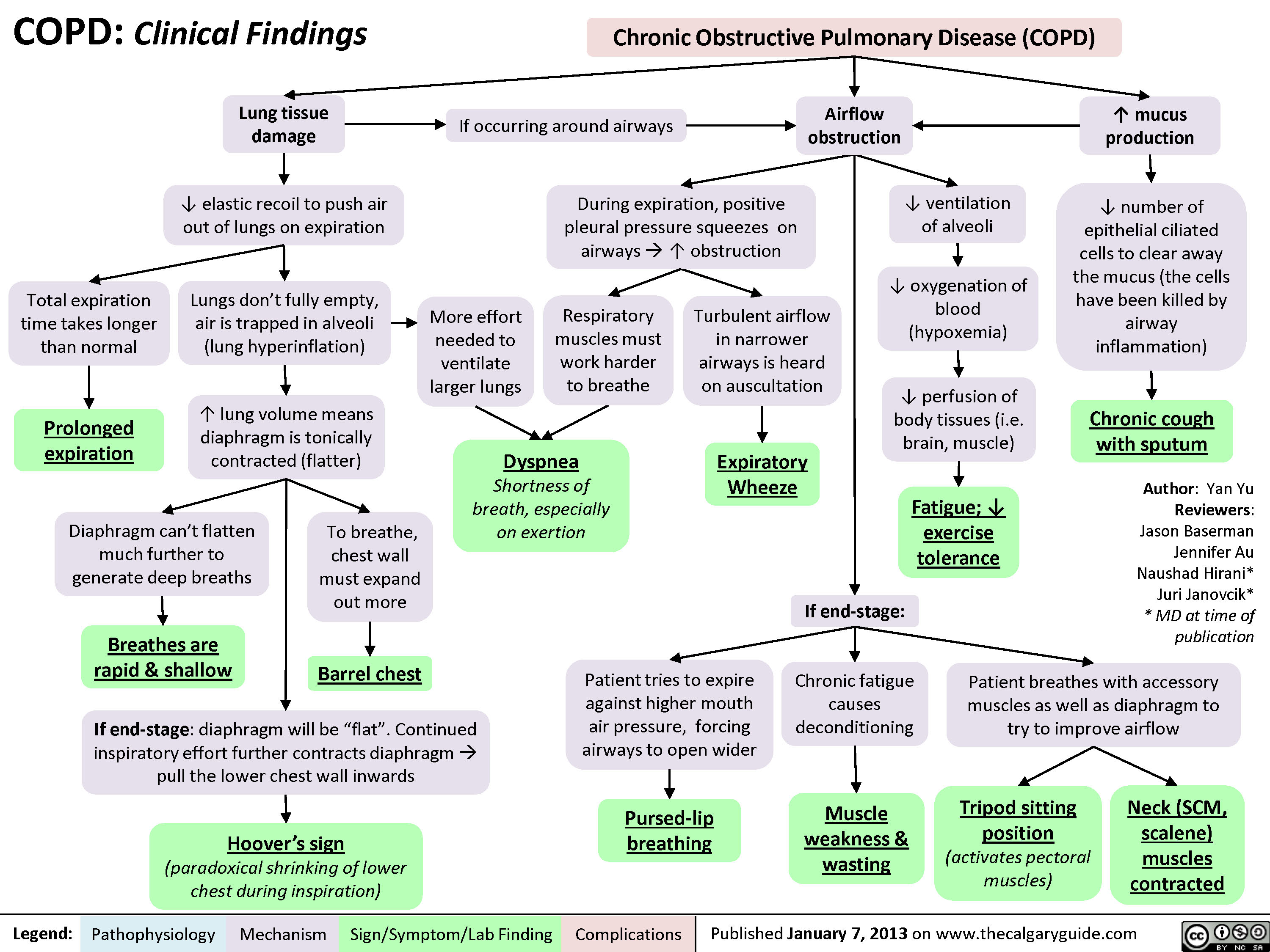 COPD: Clinical Findings