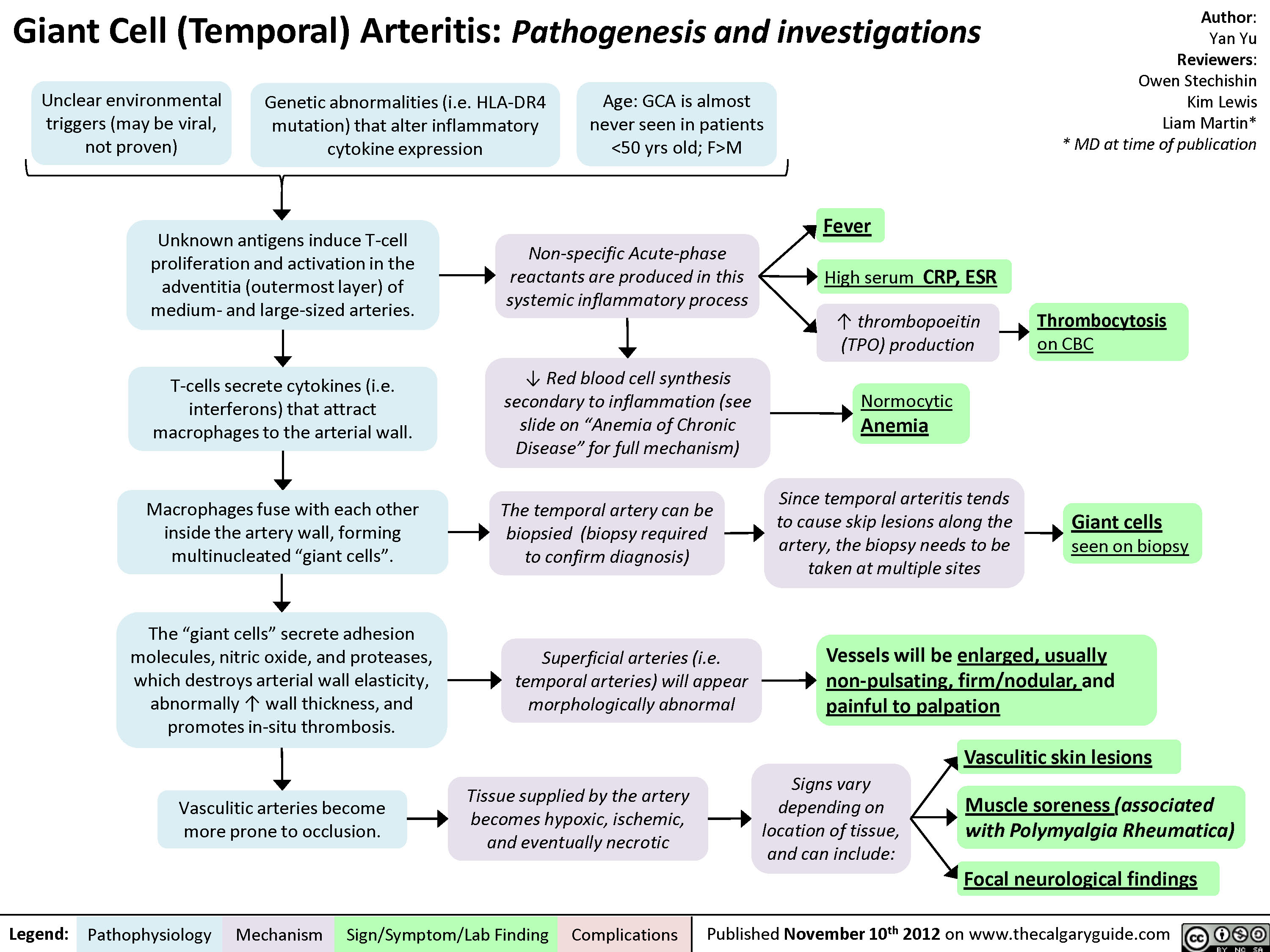 Giant Cell (Temporal) Arteritis: Pathogenesis and investigations