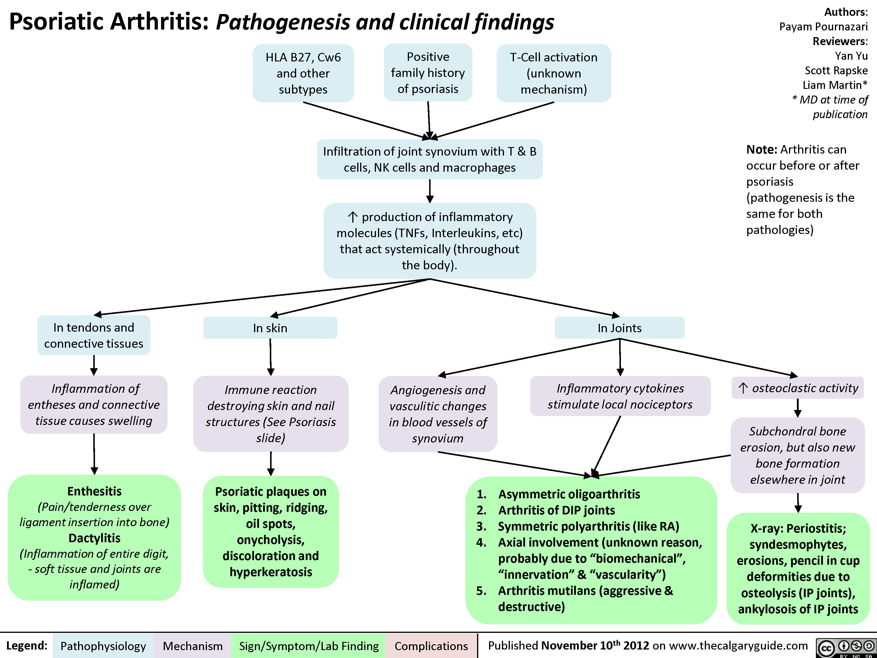 Psoriatic Arthritis - Pathogenesis and Clinical findings