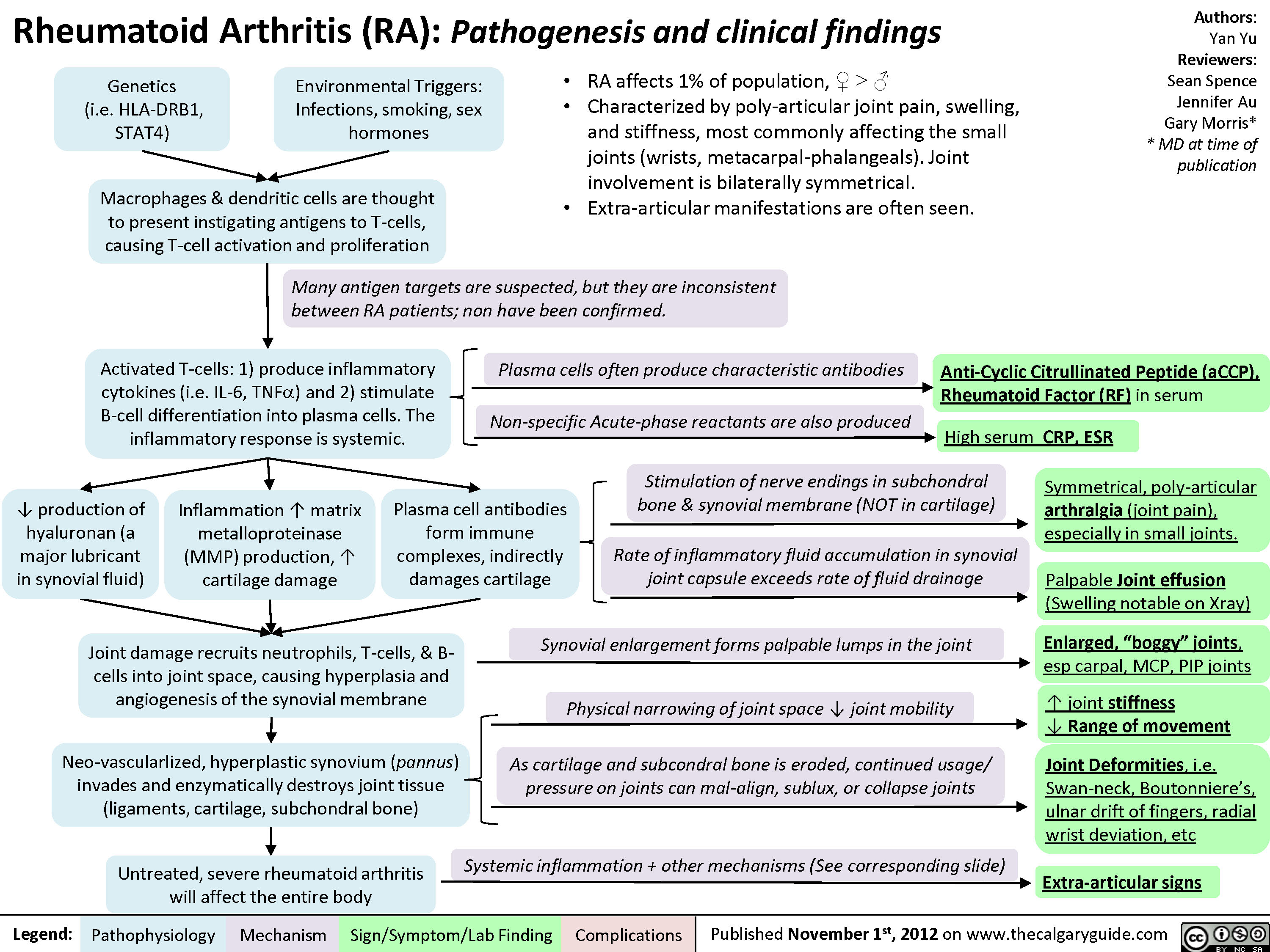 Rheumatoid arthritis (RA): Pathogenesis and Joint diseases features