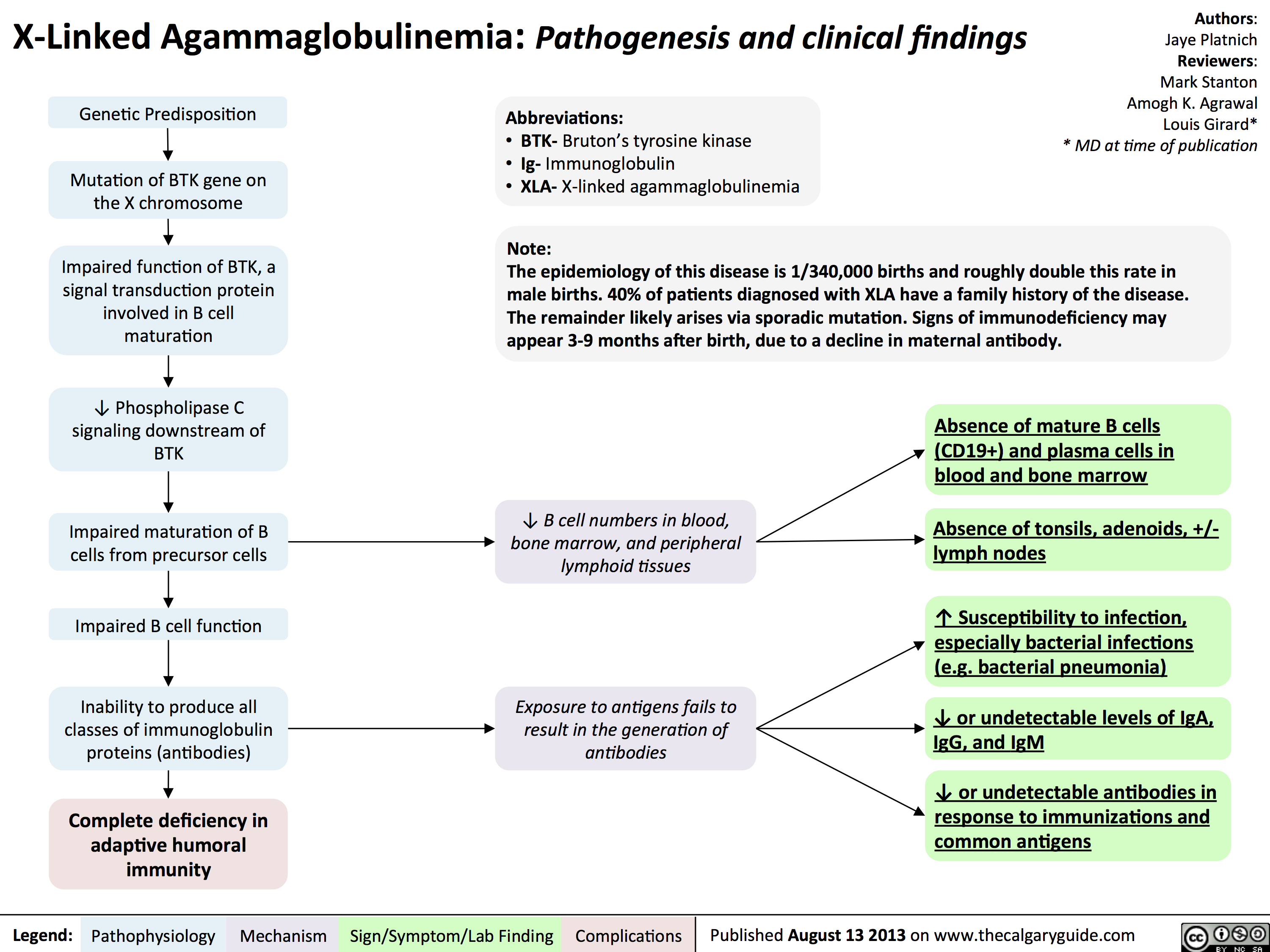 Agammaglobulinemia: Pathogenesis and clinical findings