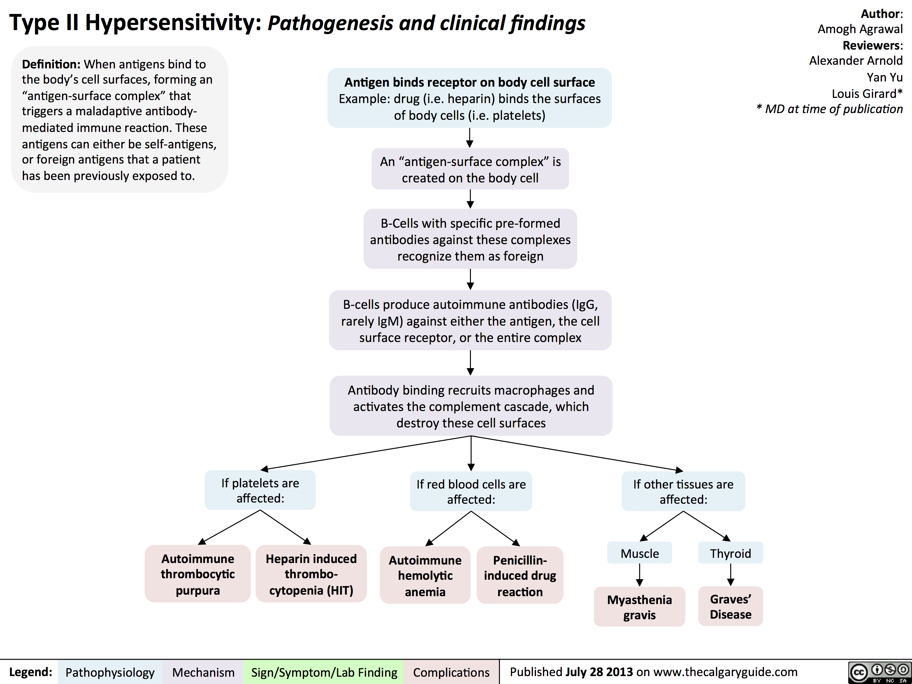 Type II Hypersensitivity: Pathogenesis and clinical findings