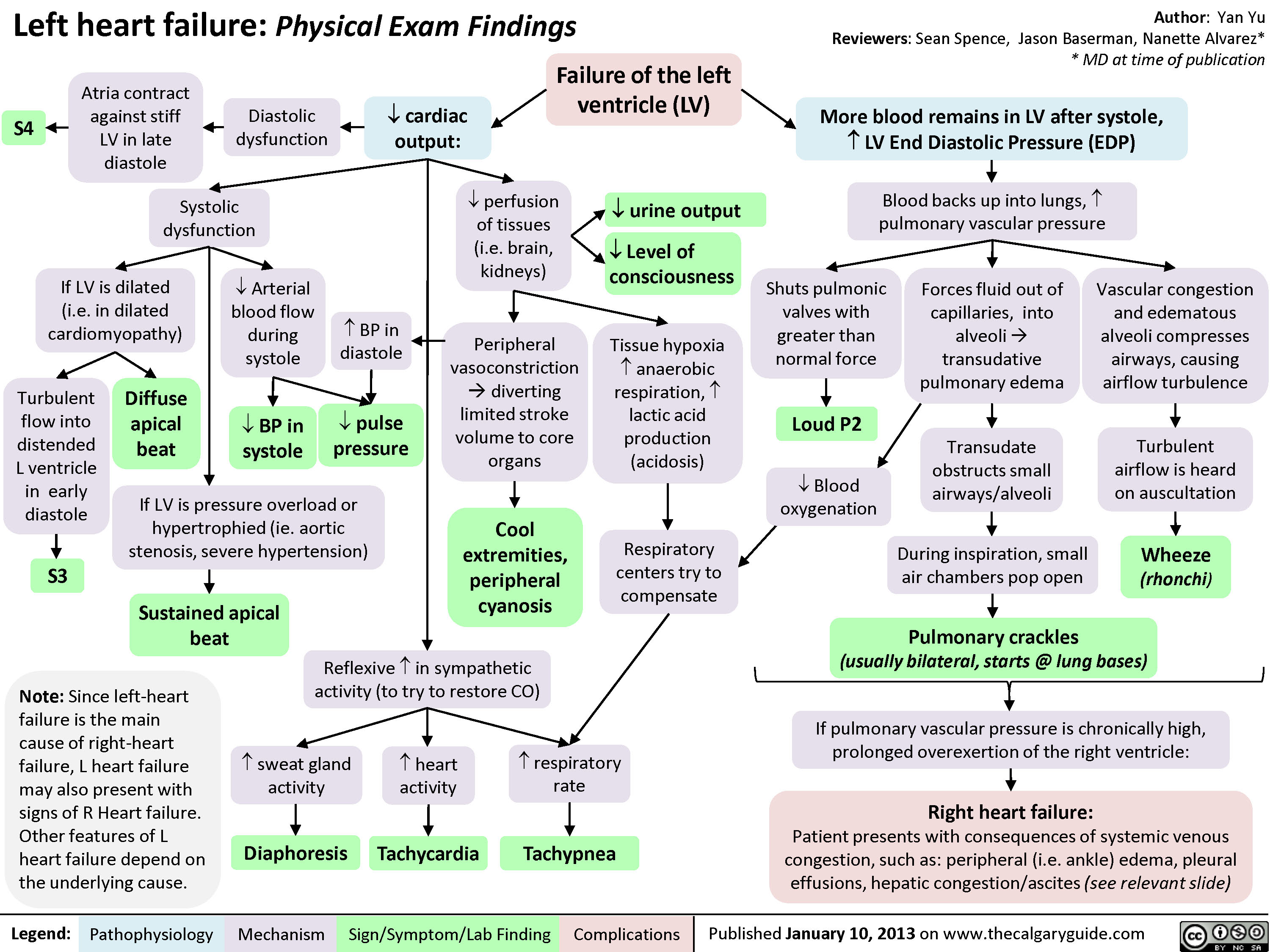 Left Heart Failure - Physical Exam Findings