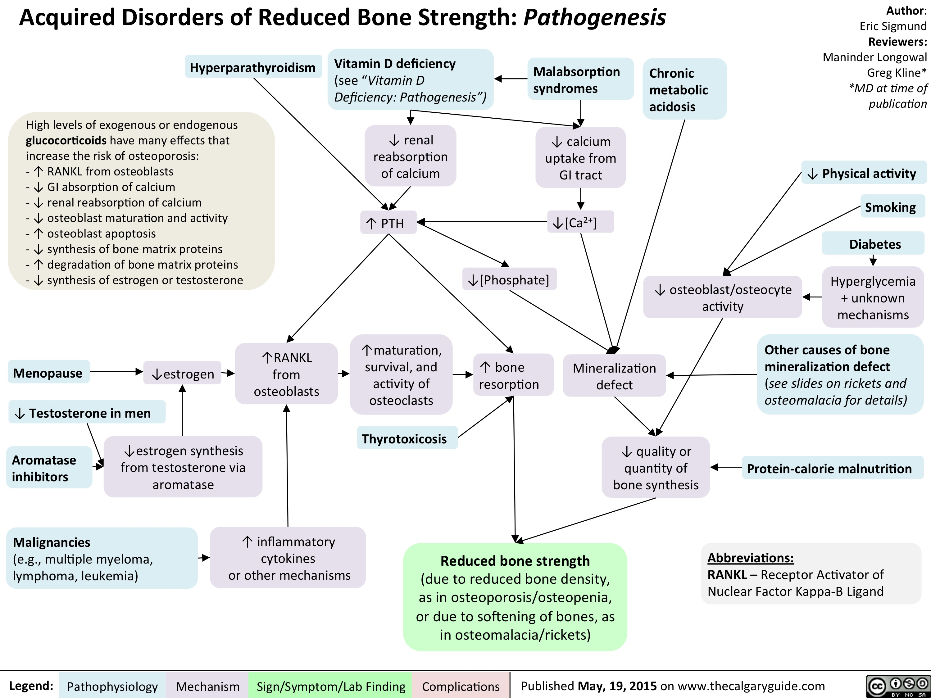 Acquired Disorders of Reduced Bone Strength - Pathogenesis
