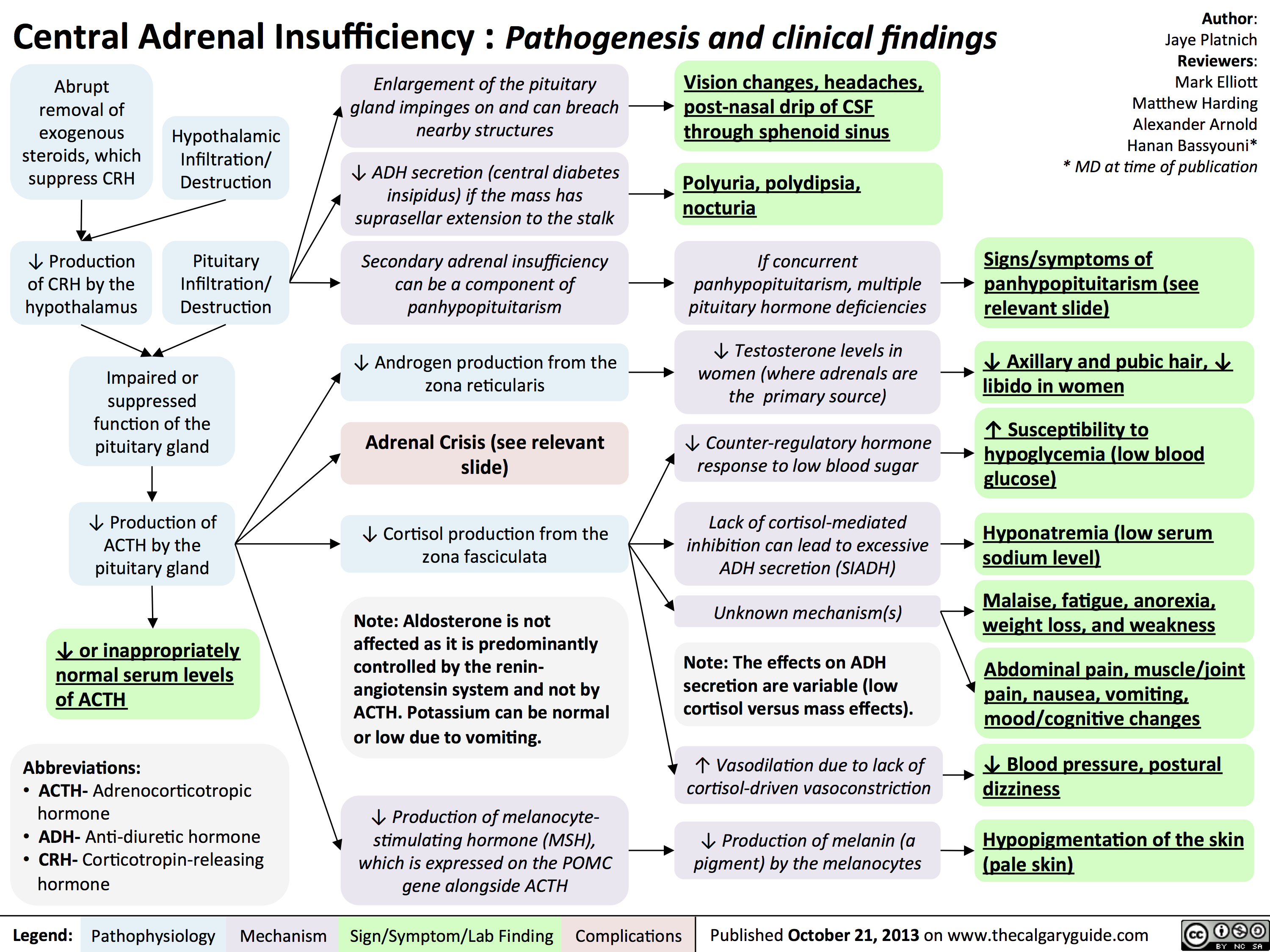Central Adrenal Insufficiency - Pathogenesis and Clinical Findings