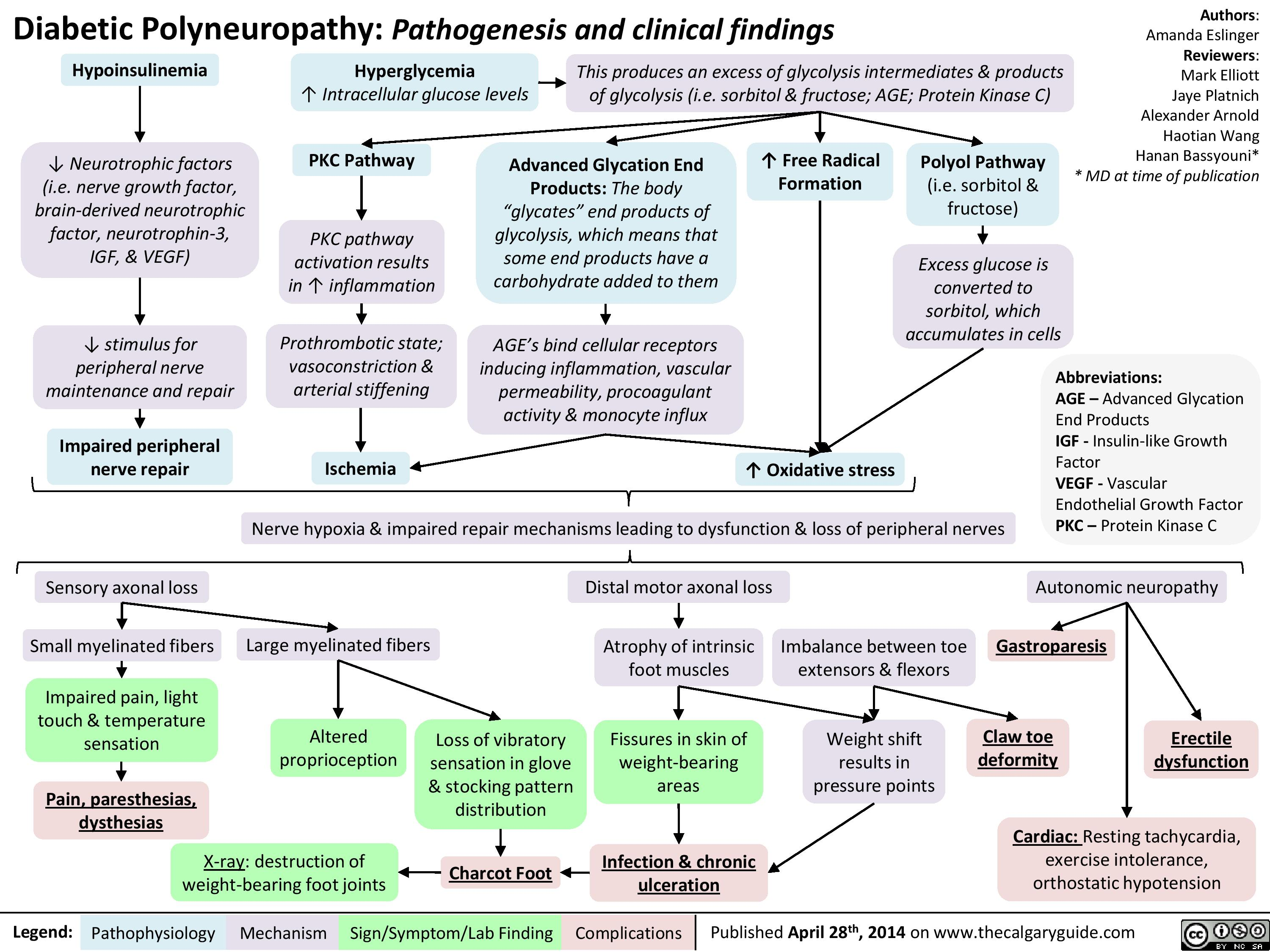Exercise Guide For Polyneuropathy Manual Guide