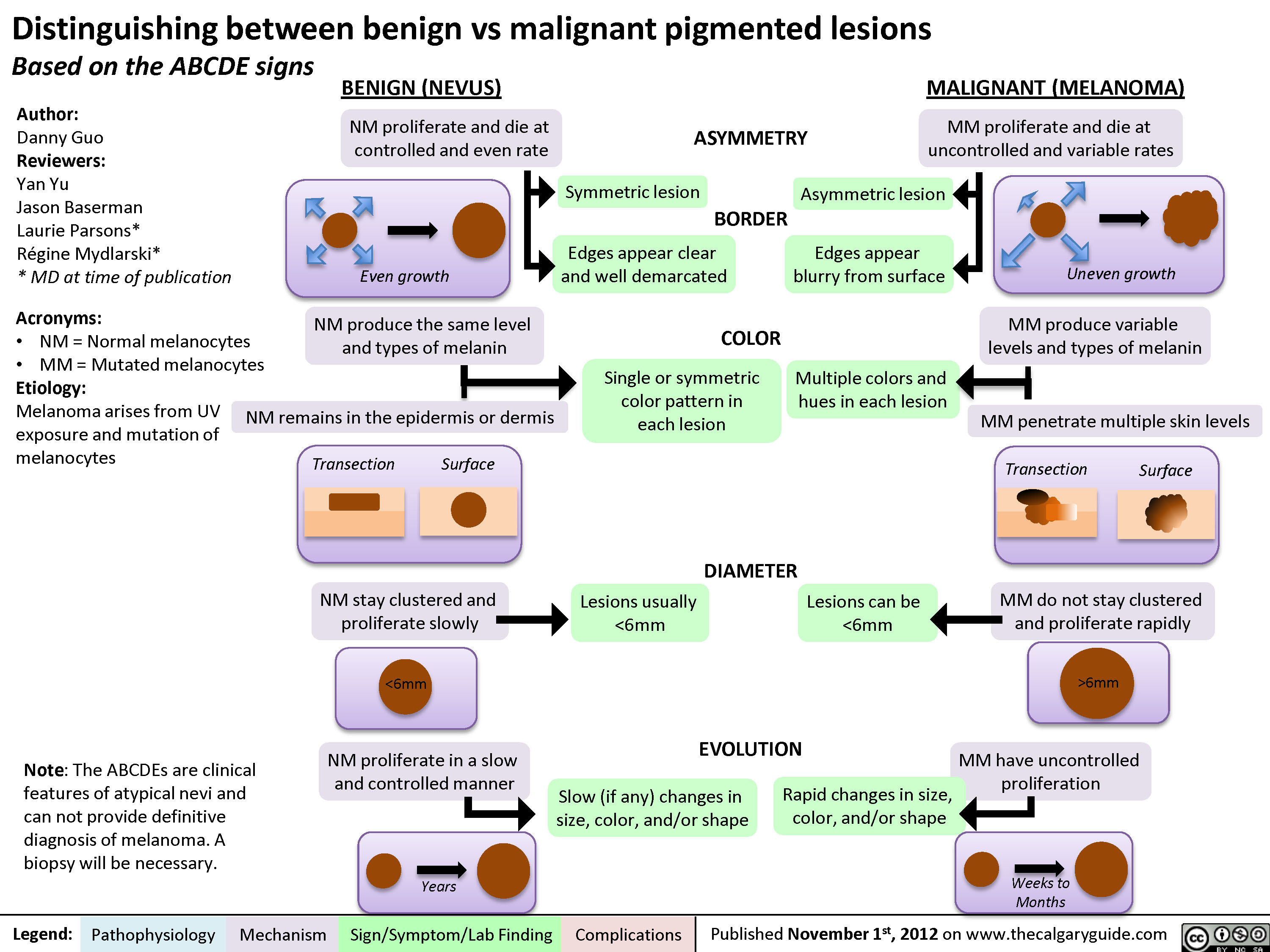 Distinguishing between Benign and Malignant Pigmented Lesions