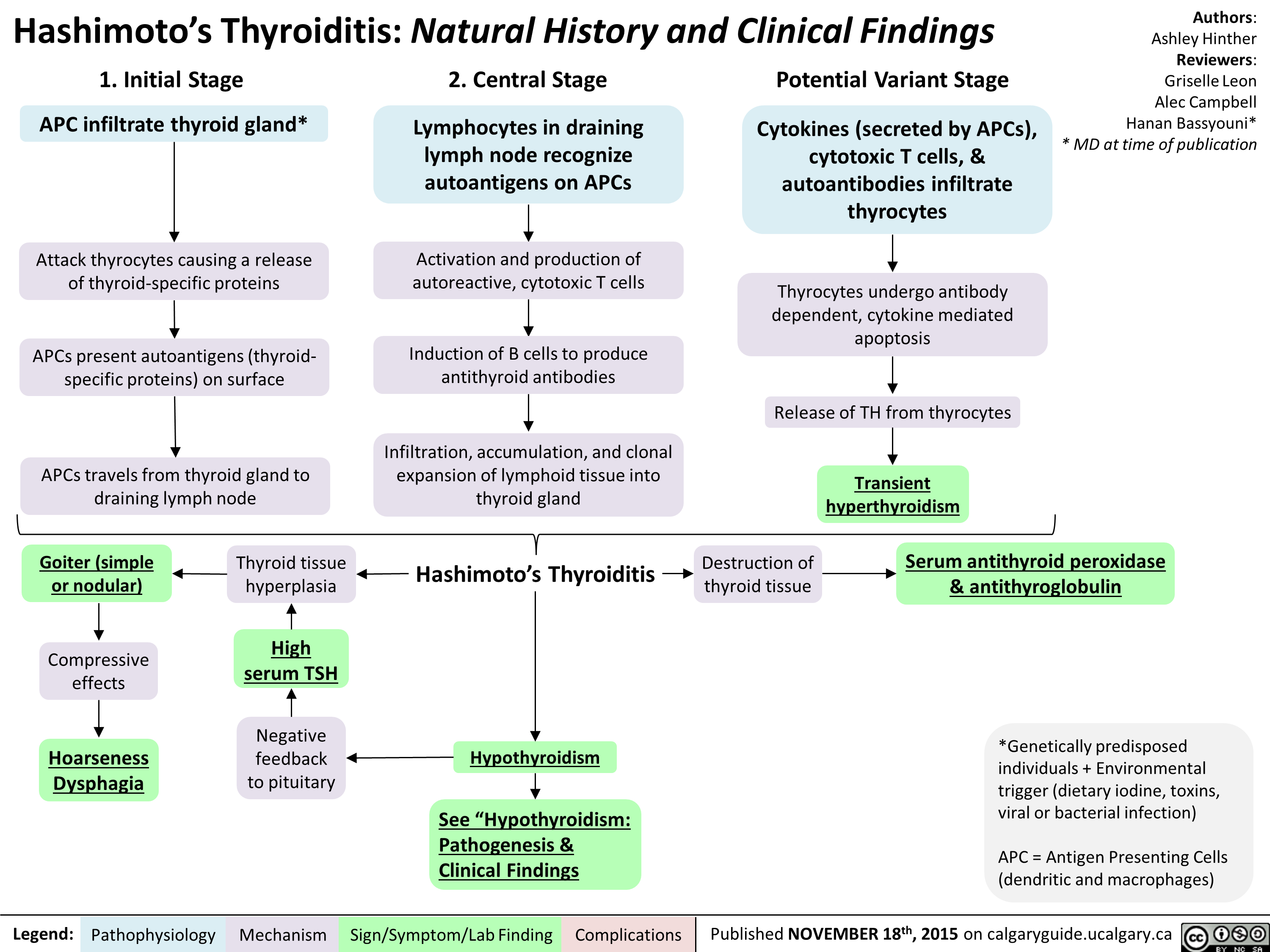 Hashimoto's Thyroiditis Natural History and Clinical Findings