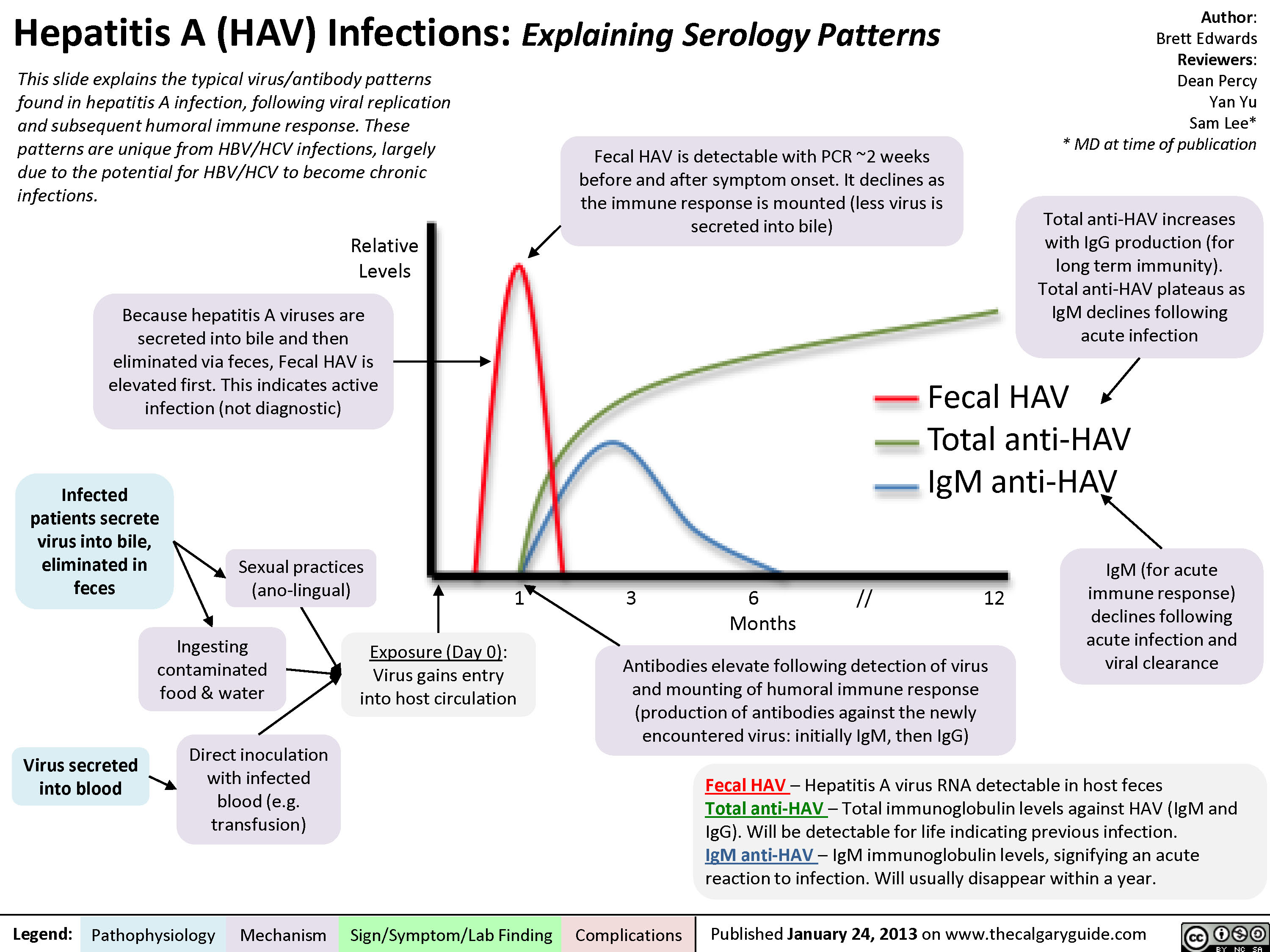 Hepatitis A (HAV) Infections