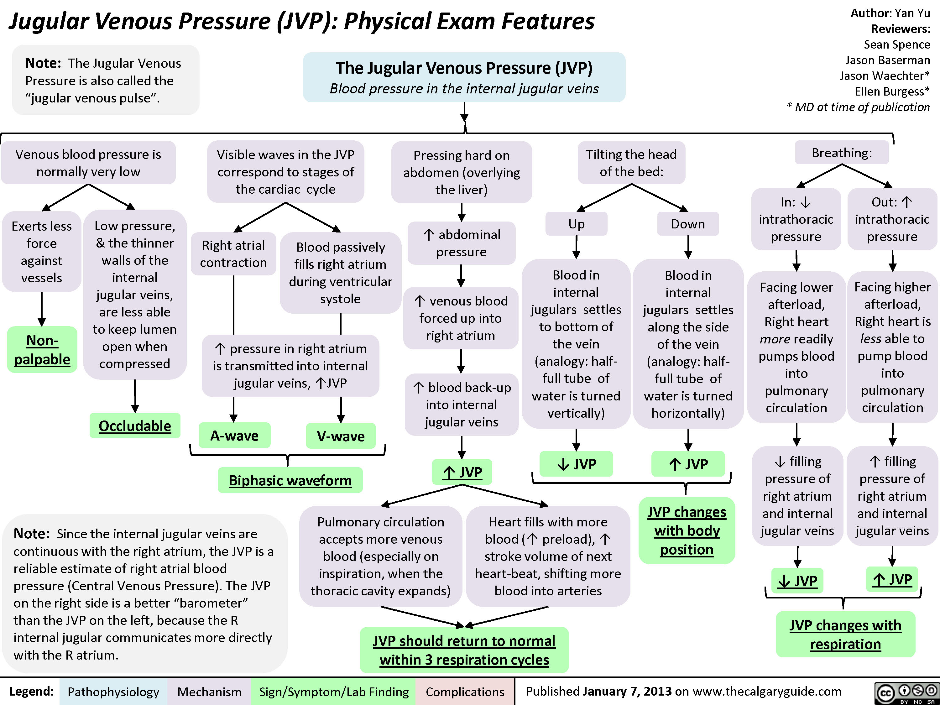 JVP-Physical Exam Features