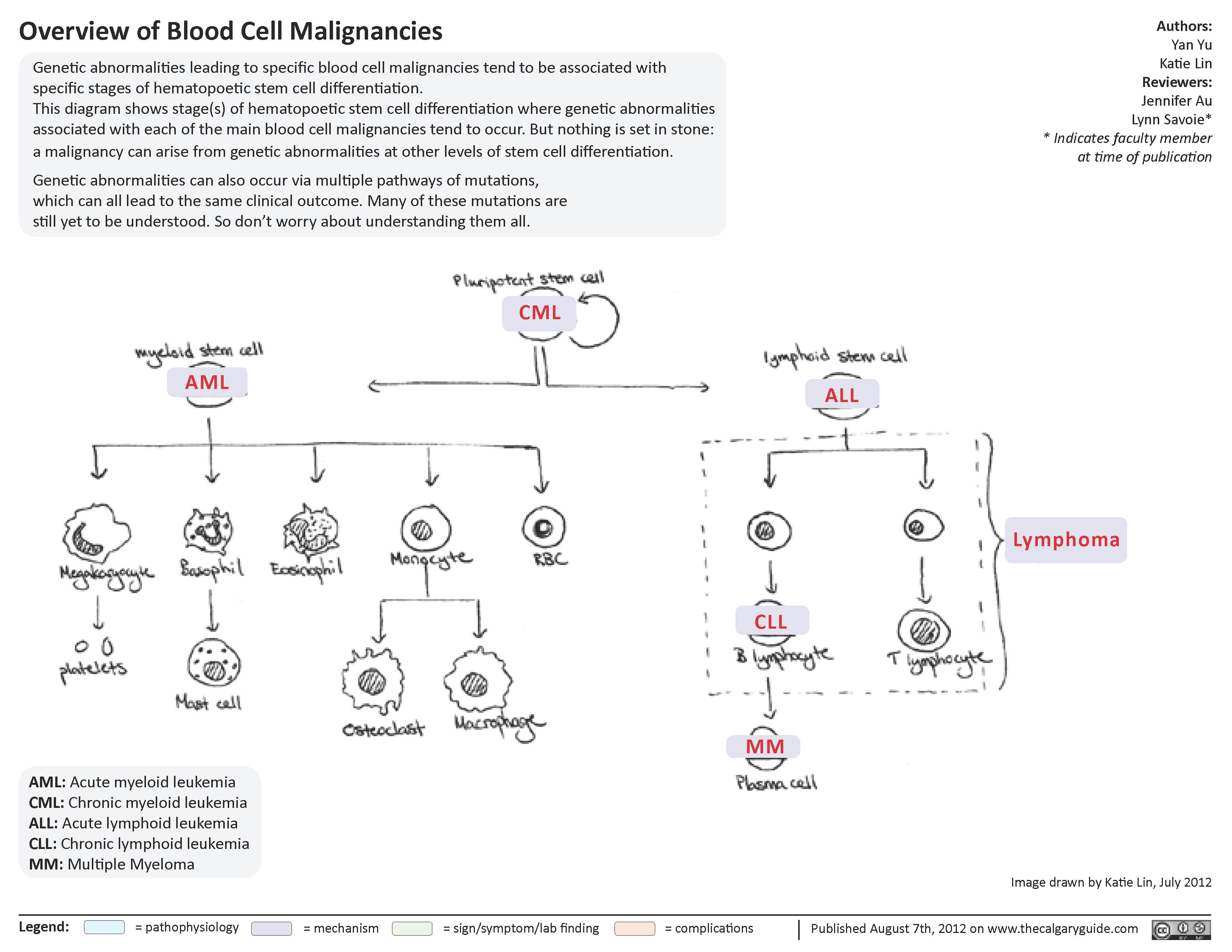 Overview of blood cell malignancies