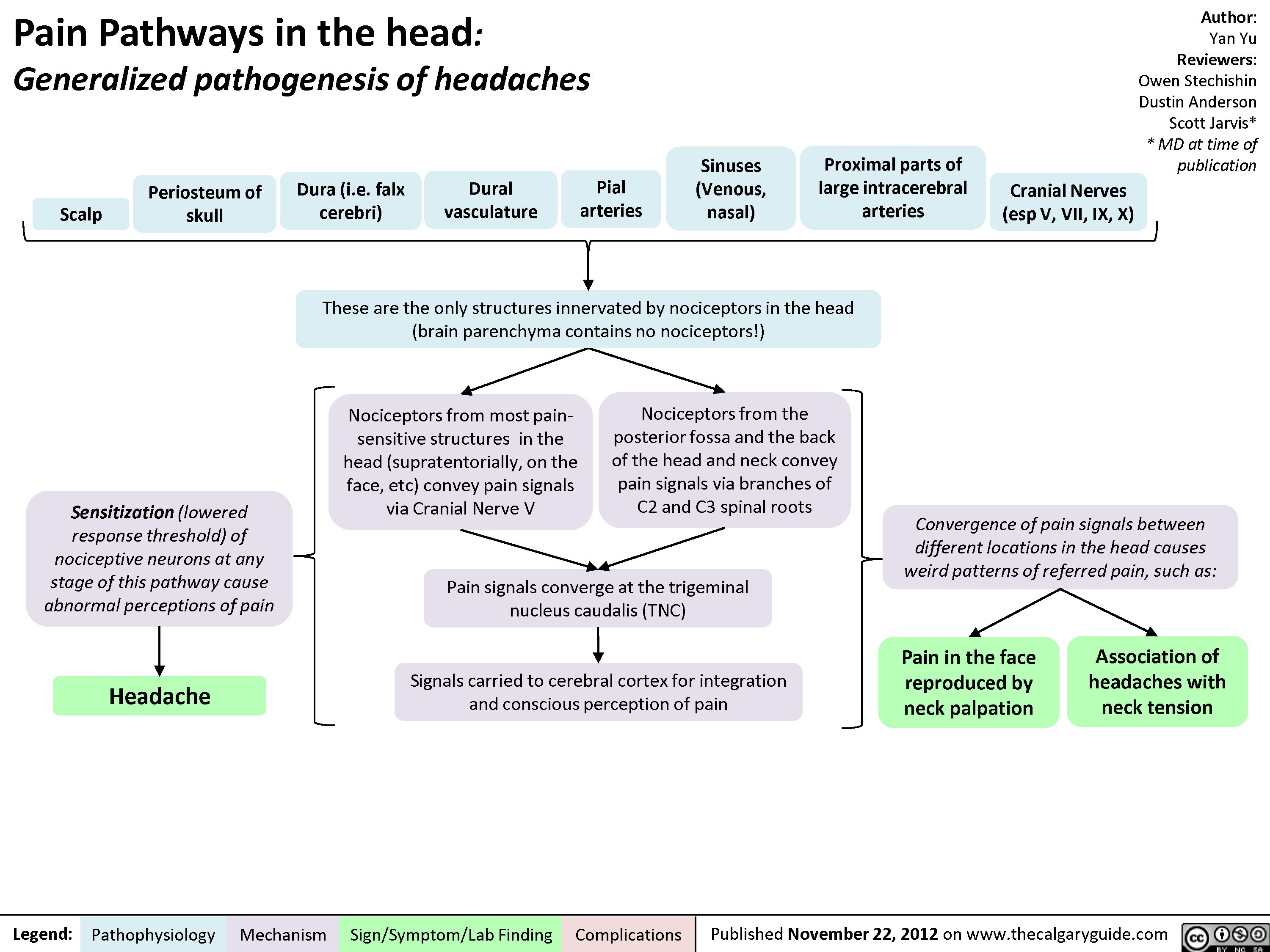 Pain Pathways in the Head