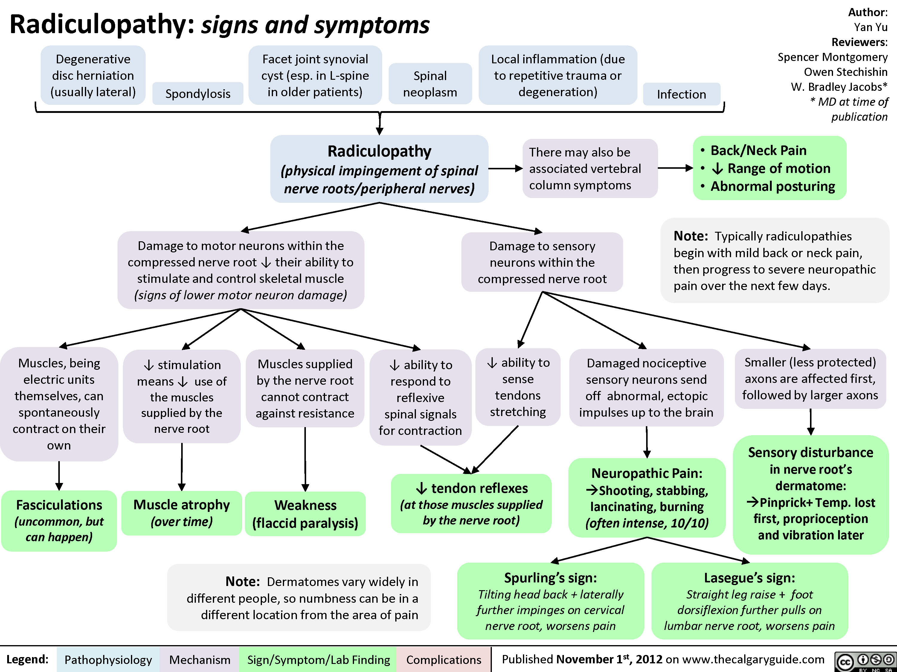 Radiculopathy