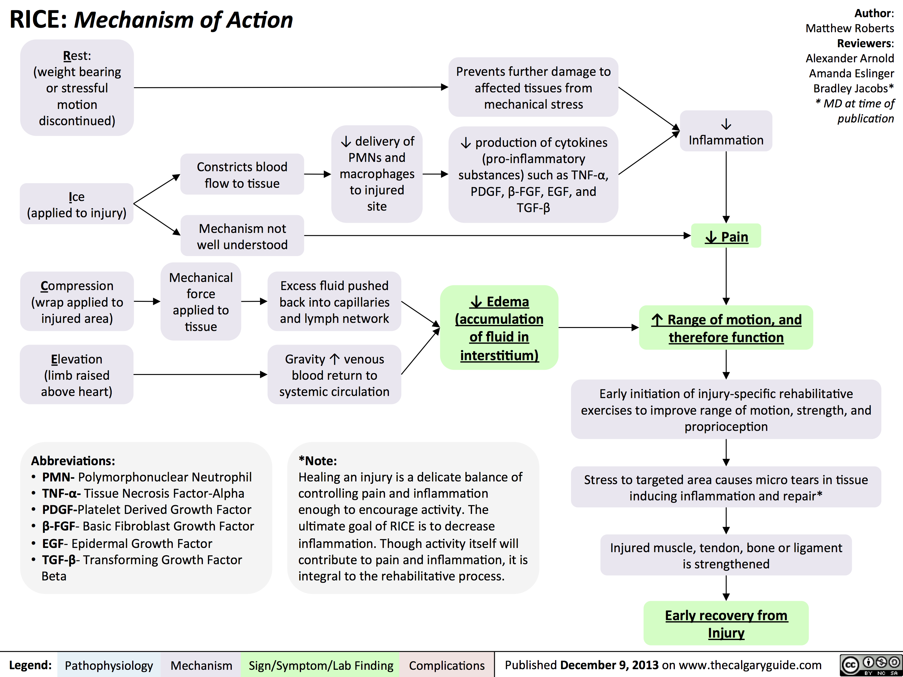 Rice - Mechanism of Action