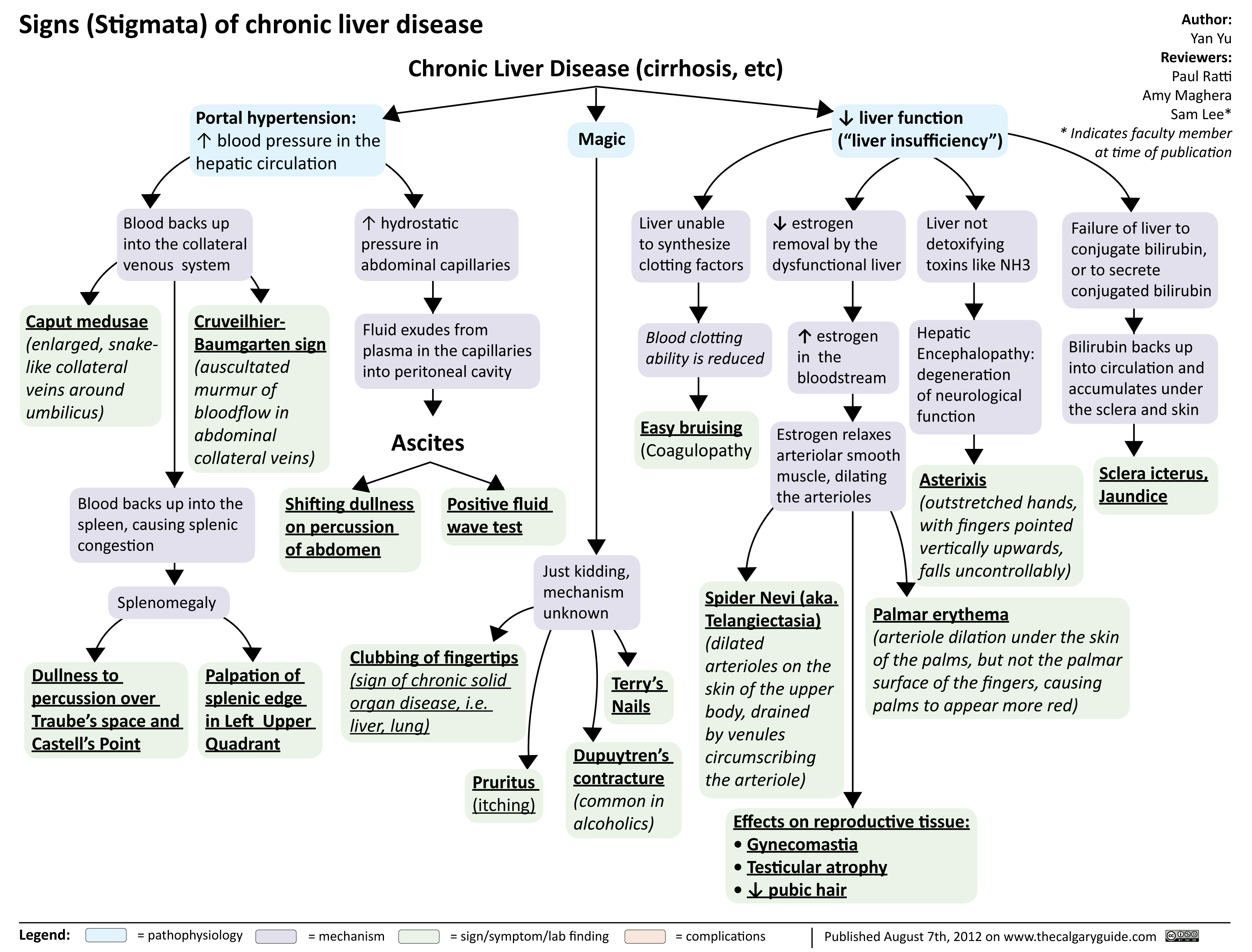 signs of chronic liver disease