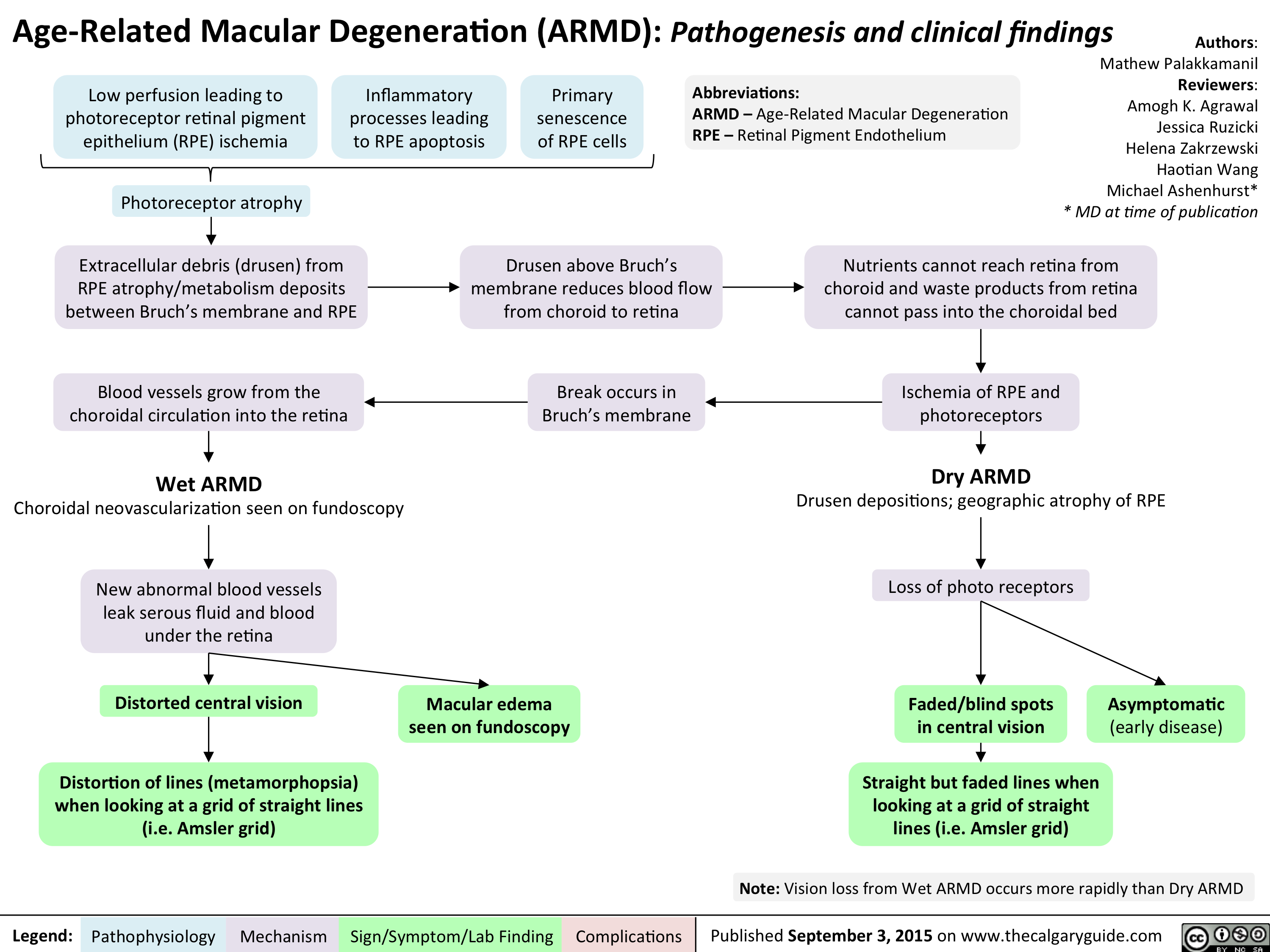 Age Related Macular Degeneration - Pathogenesis and clinical findings