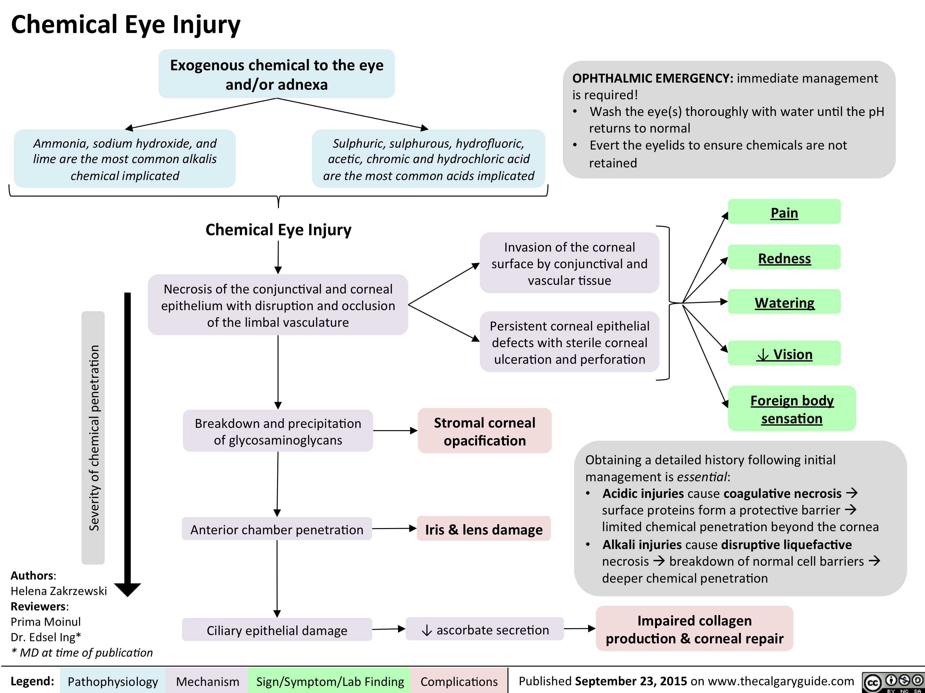 Chemical Eye Injury Pathogenesis and clinical findings
