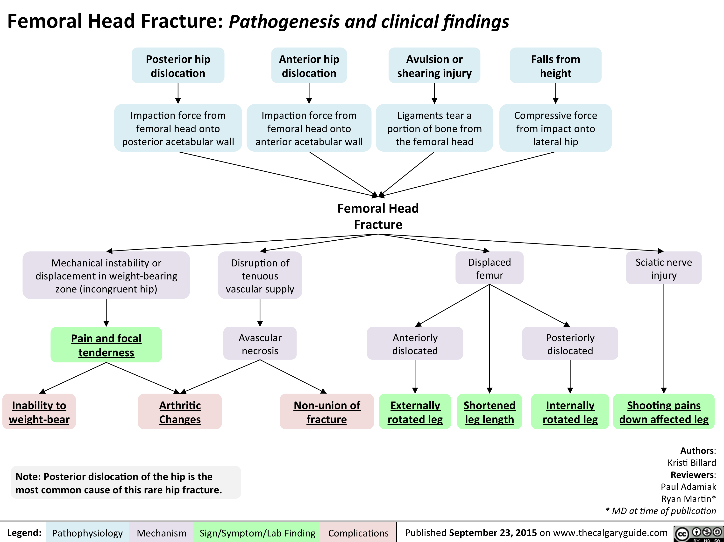 Femoral Head Fracture Pathogenesis and clinical findings