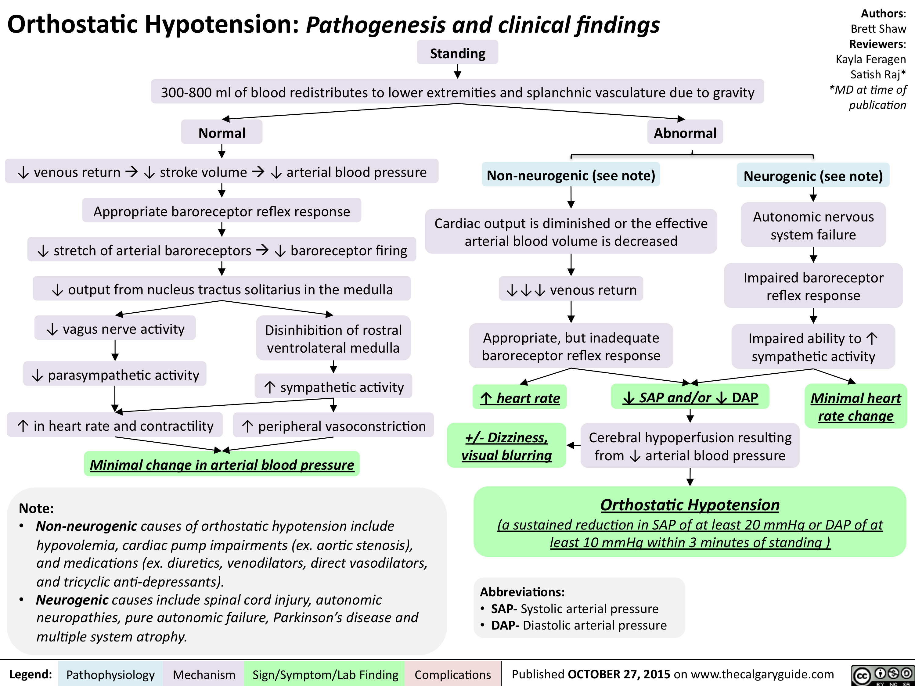 Orthostatic Hypotension-Pathogenesis and clinical findings