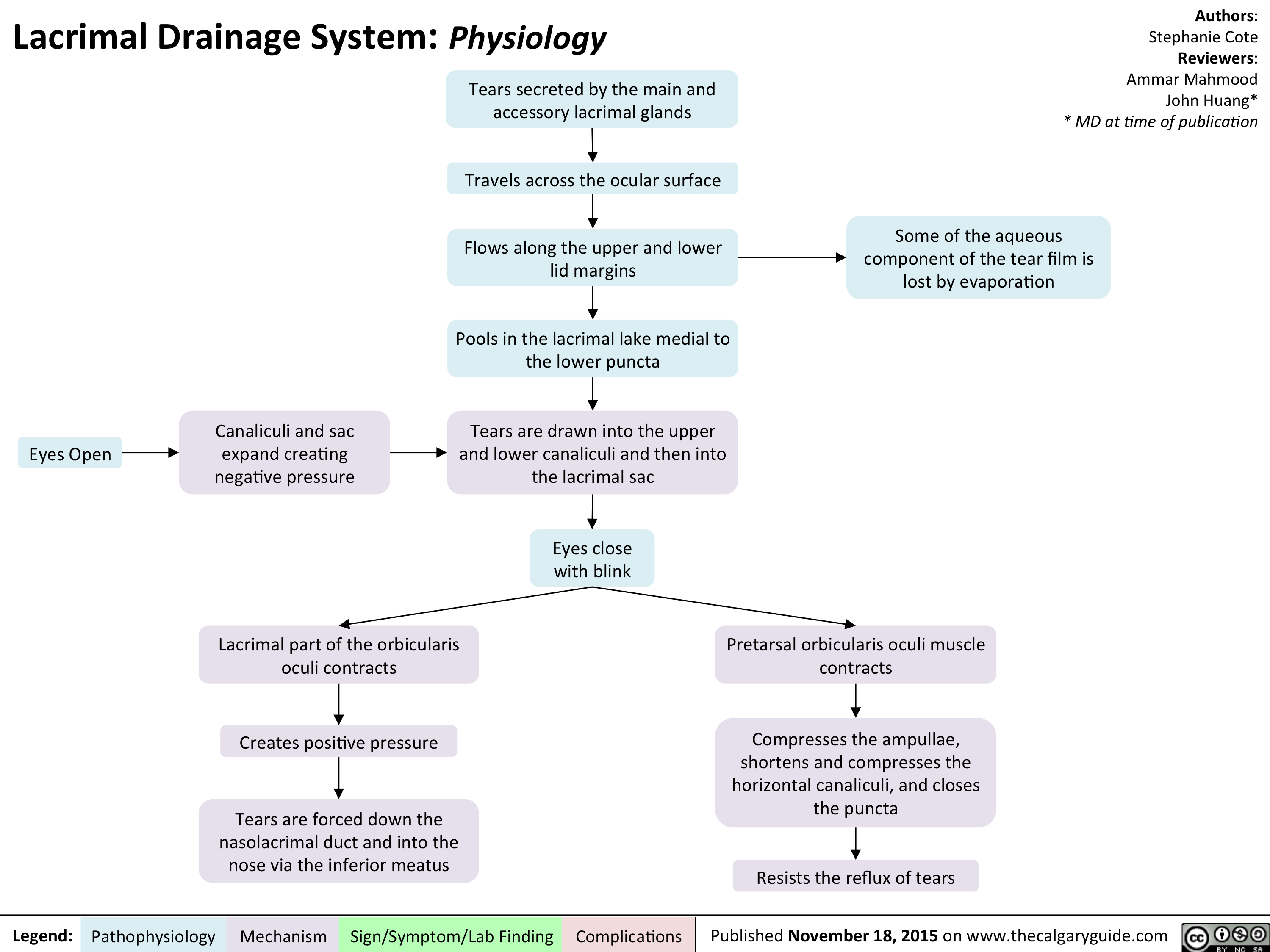 Lacrimal Drainage System - Physiology