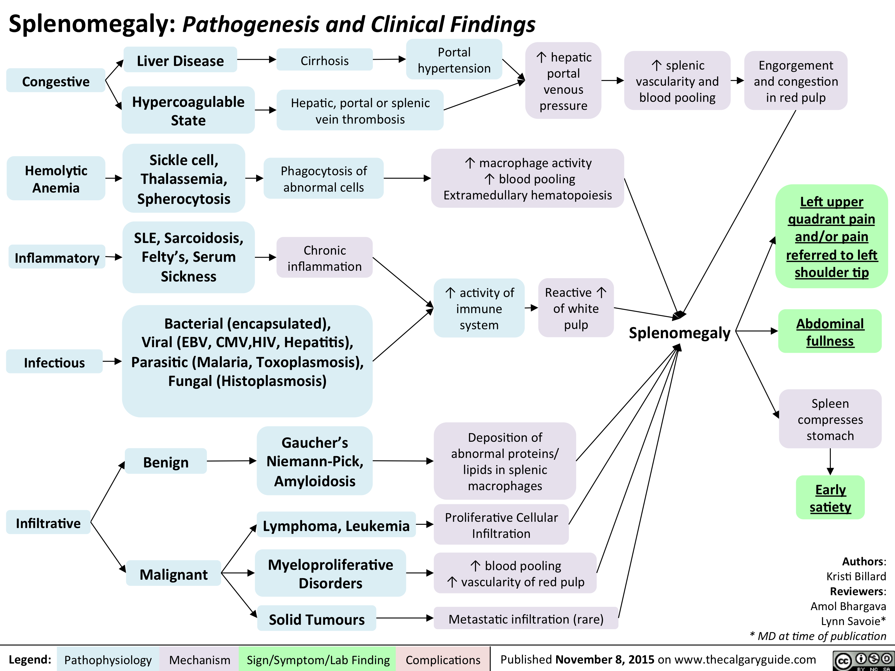 Splenomegaly - Pathogenesis and clinical findings