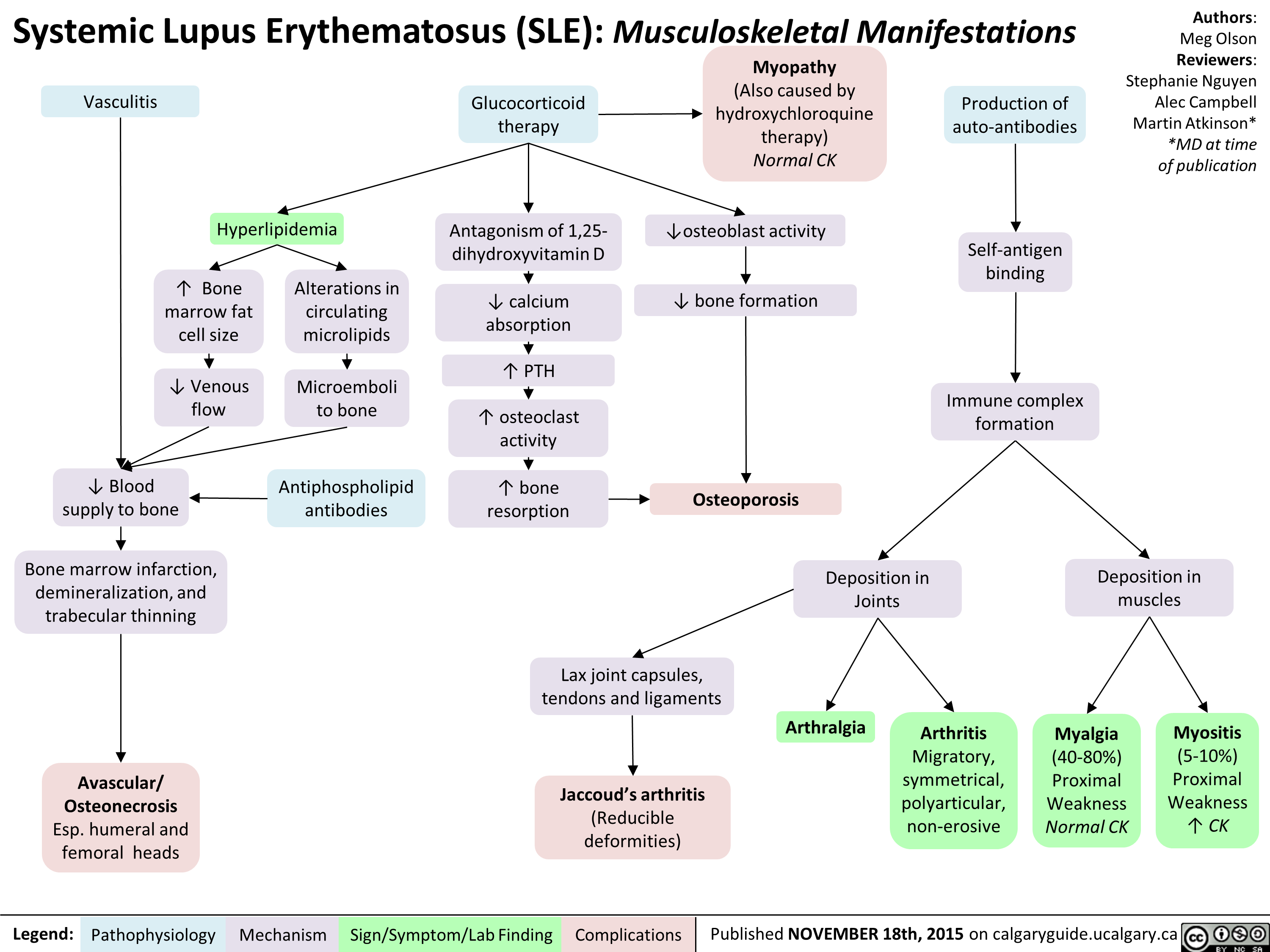 Systemic Lupus Erythematosis SLE Musculoskeletal Manifestations