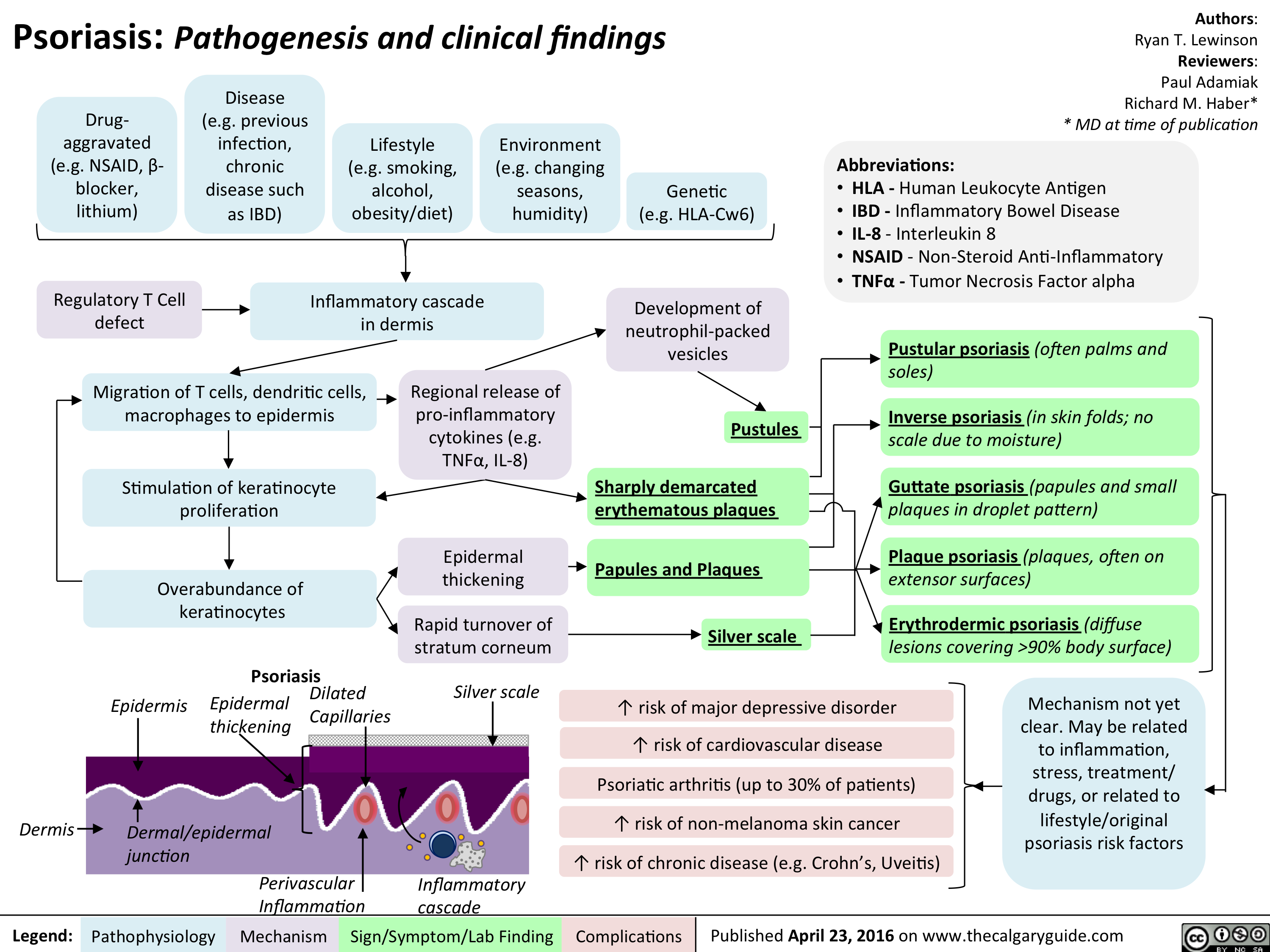 Psoriasis: Pathogenesis and clinical findings