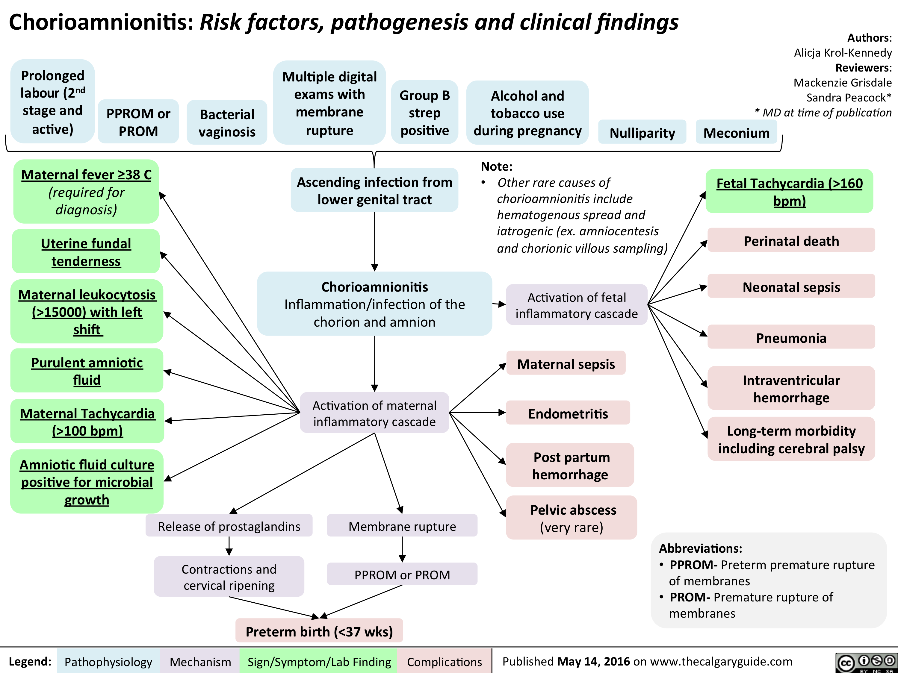 Chorioamnionitis_FacultyReviewed