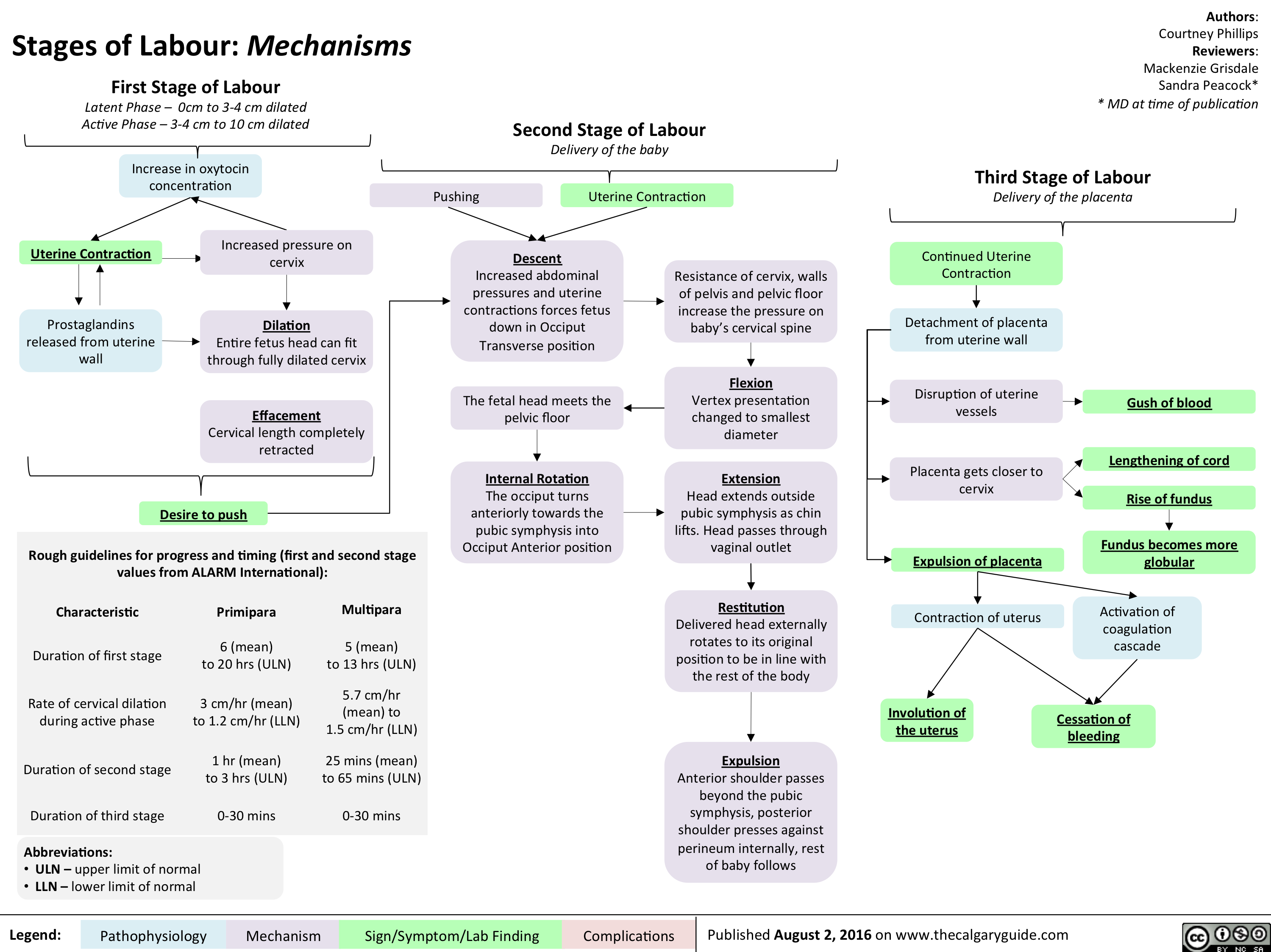 Stages of Labour: Mechanisms