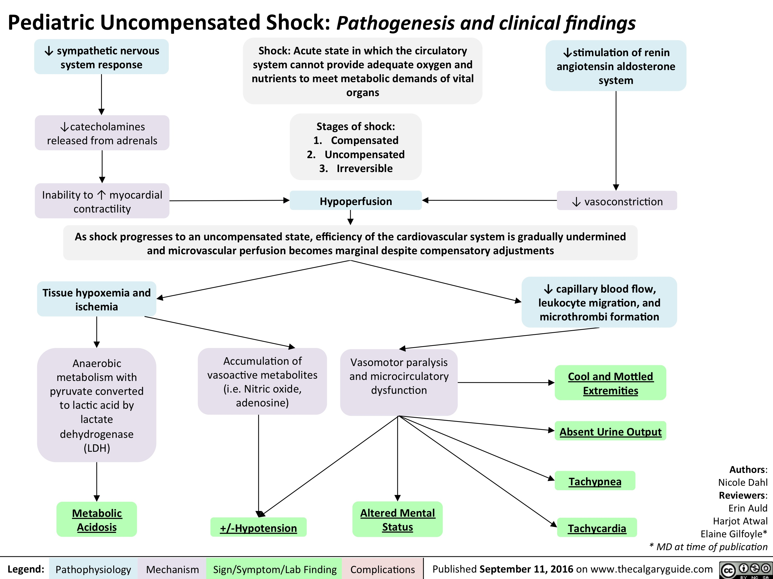 pediatric-uncompensated-shock-review