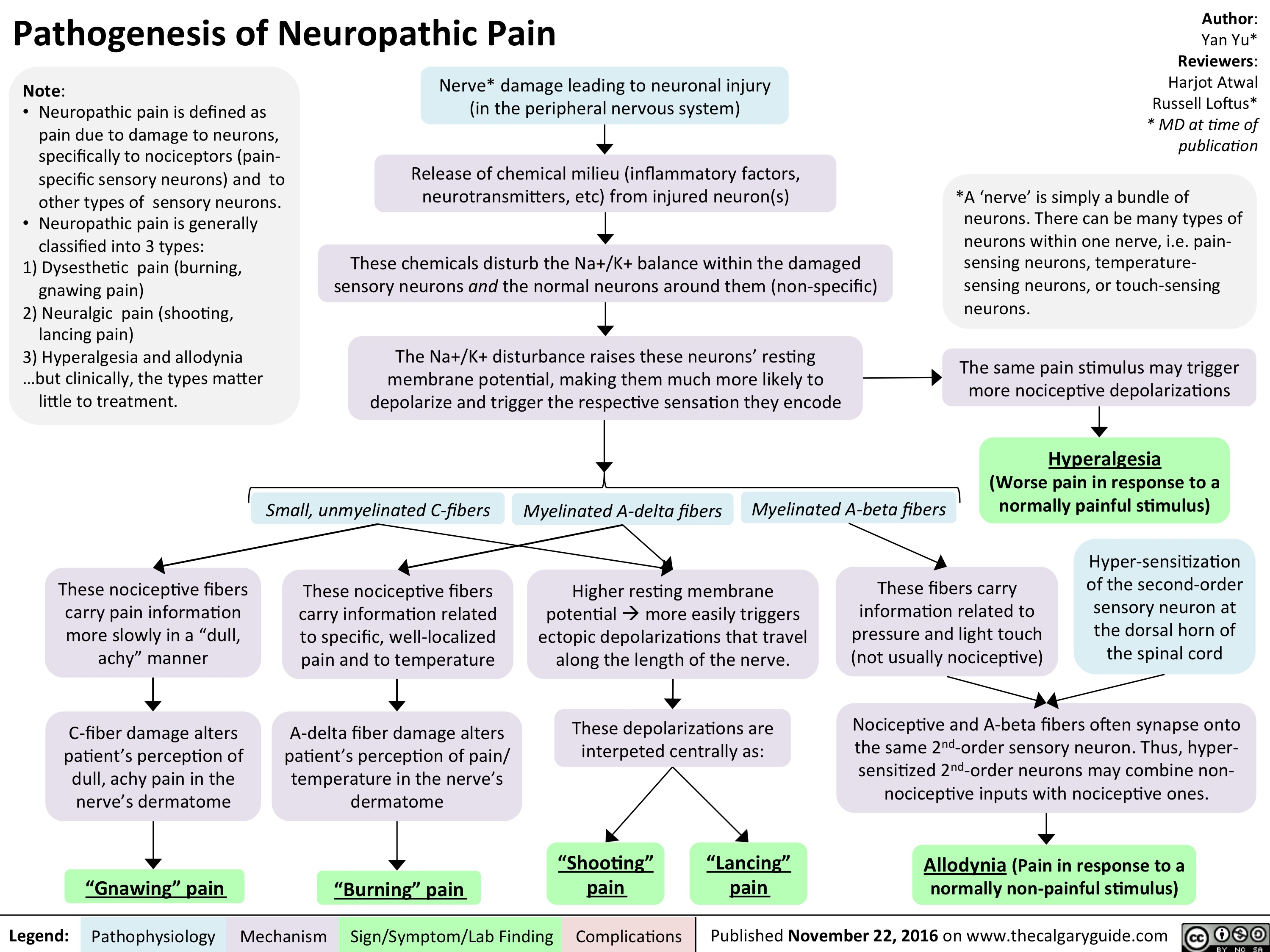 pathogenesis-of-neuropathic-pain