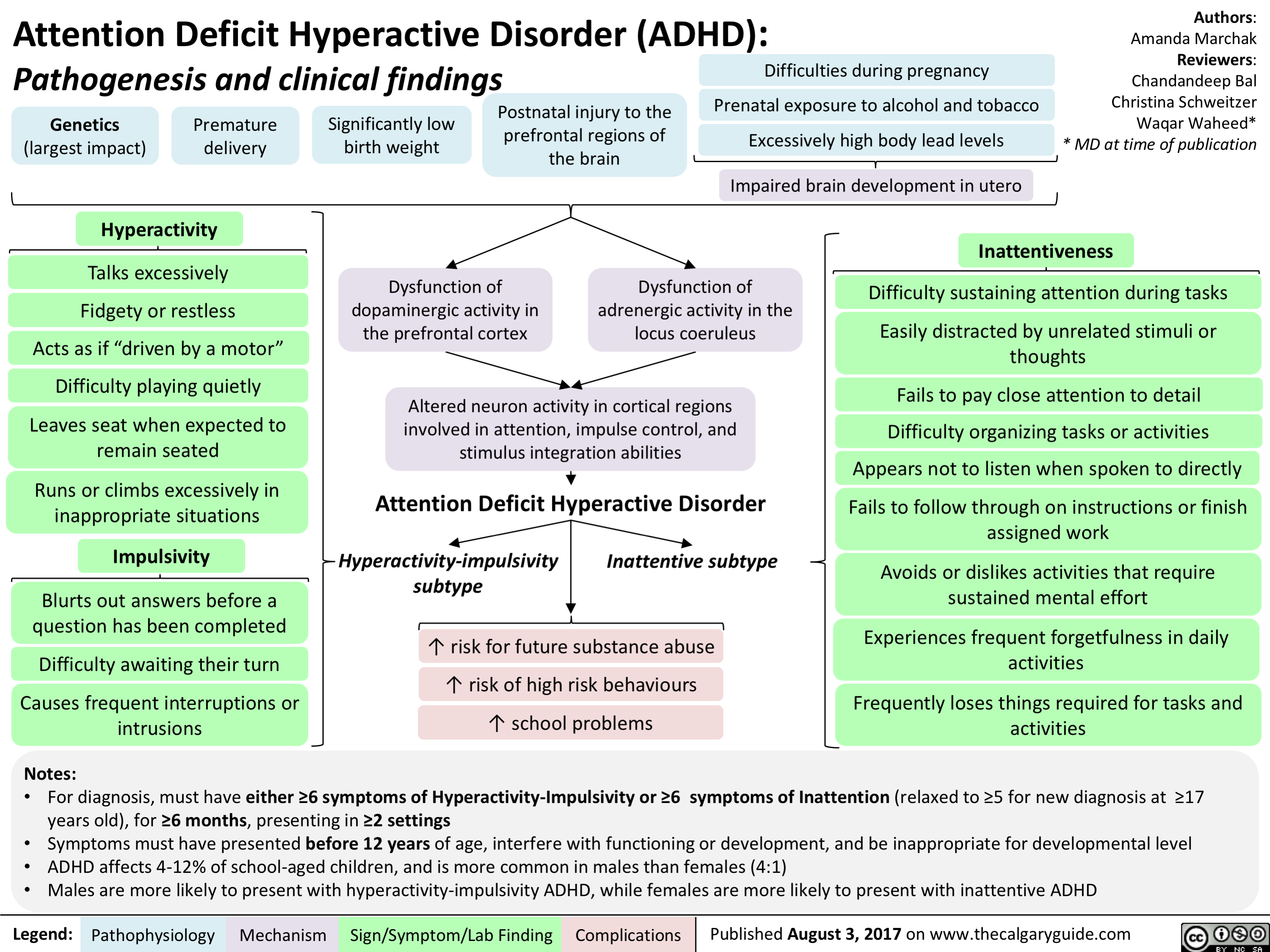 3067c66d3455b Attention Deficit Hyperactive Disorder (ADHD): Pathogenesis and ...