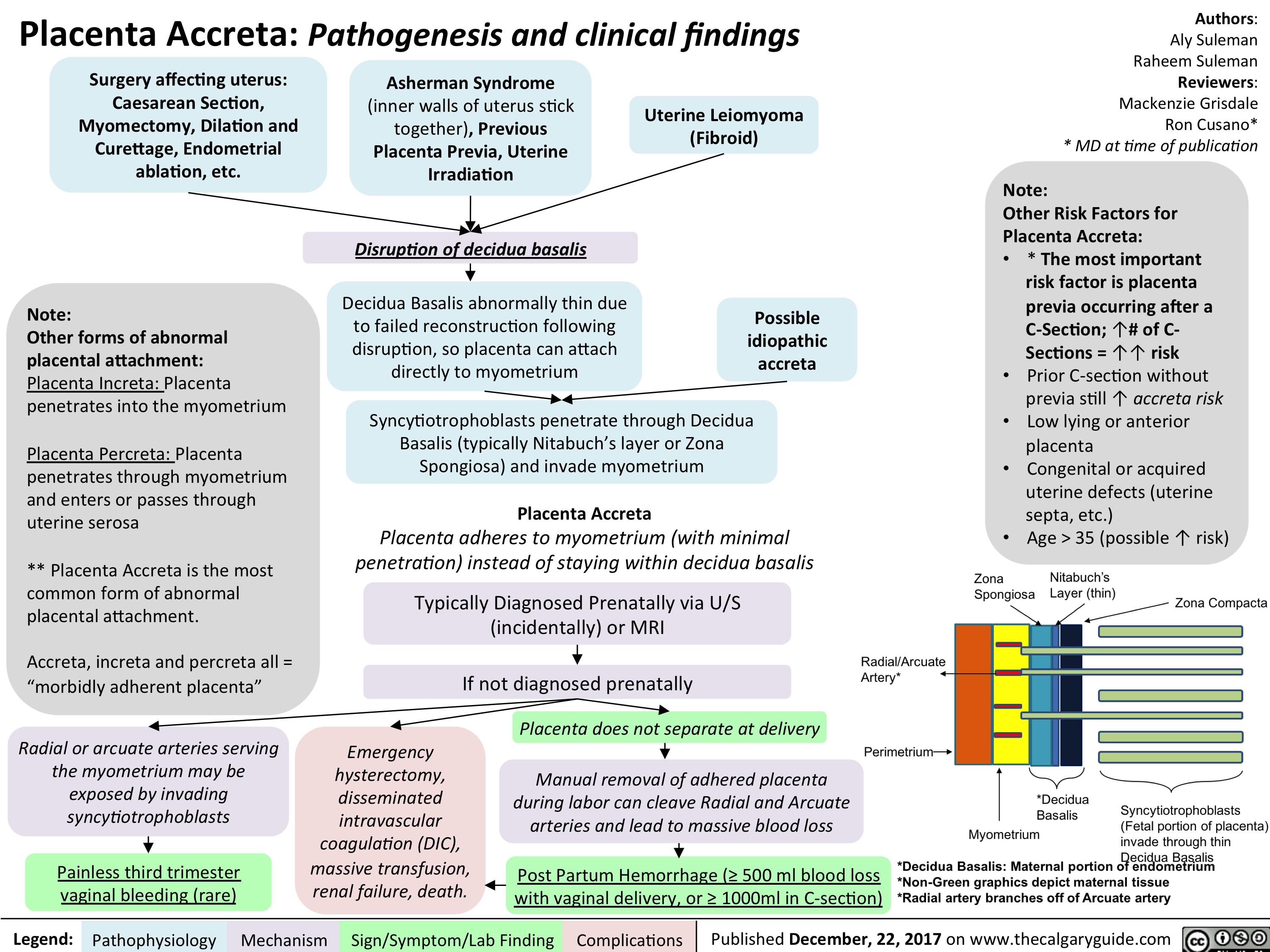 Placenta Previa Symptoms, Possible Complications, And Risk Factors